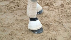 TruTex Oasis – 500lbs per bale