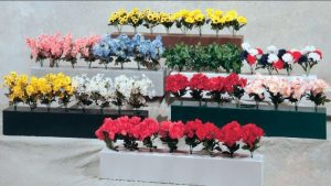Flower Boxes and Flowers
