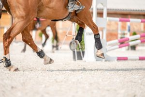 How Deep Should Arena Sand be for Jumping Horses?